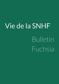 Bulletin Fuchsia